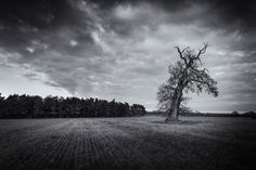 Photograph Warrior by Lee Acaster on 500px