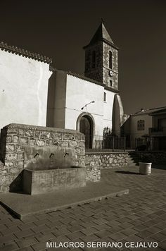 Recorriendo Albacete: GOLOSALVO
