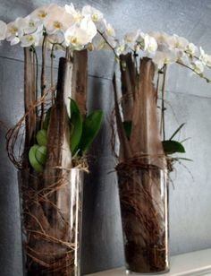 Fantastic use of garden scraps to create a unique vase filler for these beautiful orchids.