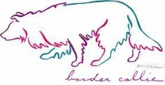 outline of a border coillie - Google Search