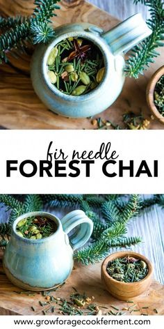 Fir Needle Forest Chai for Respiratory Wellness This foraged tea blend uses fir needles and chai spices to create a delicious and festive drink that is also a good herbal and natural remedy for respiratory wellness. Vida Natural, Natural Healing, Natural Oil, Holistic Healing, Natural Beauty, Natural Health Remedies, Herbal Remedies, Cold Remedies, Bloating Remedies