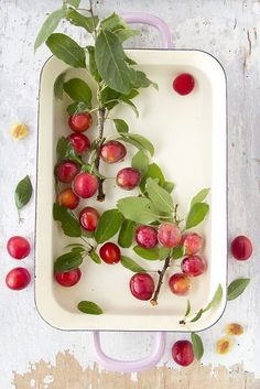 Cherry limbs and fruit in vintage enamelware pan