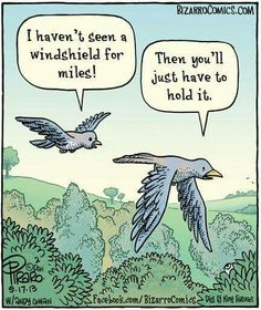 OMG! My car is the bird doody magnet! Errr drives me nuts! Hahaha.... Harrumphf!