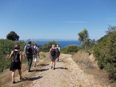 Hiking, Activities, Mountains, Nature, Travel, Walks, Viajes, Traveling, Trekking