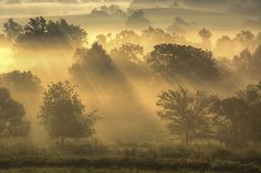 Kissed in the morning | Photo by  Scott Taylor, on Flickr