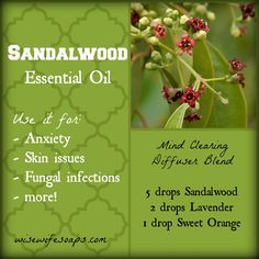 √ -- Sandalwood Essential Oil Uses and Info PLUS Mind Clearing Diffuser Blend. -- A lovely diffuser blend. Essential Oil Diffuser Blends, Essential Oil Uses, Doterra Essential Oils, Young Living Essential Oils, Healing Oils, Aromatherapy Oils, Sandalwood Essential Oil, Living Oils, Living Room