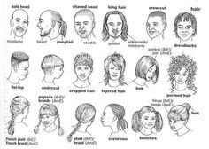 Useful Vocabulary about hair and styles