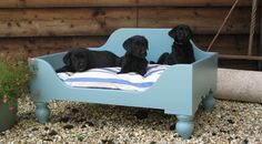 wooden dog bed - Google Search