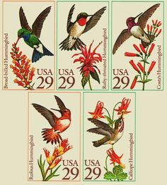 PaperSponge.com Vintage Ephemera, Postcard, Paper & Book Blog - HOME - 1992 Hummingbirds 5-Pane 29-cent StampSeries