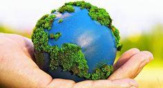 19 #Cortometrajes sobre Medio Ambiente, Calentamiento Global y Consumo Responsable Thematic Units, Rse, School, Collage, Earth, Index Cards, Stenciling, Global Warming, Create