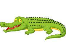 Crocodile cartoon Stock Photography