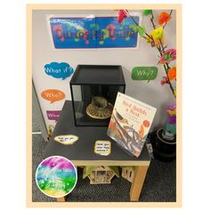 Early Years ideas from Tishylishy Curiosity Cube containing a nest Curiosity Approach Eyfs, Curiosity Box, Reggio Emilia Classroom, Reception Class, Science Activities For Kids, Panda Activities, Tuff Tray, My Settings, Baby Owls