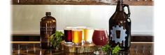 Innovation Brewing—Sylva NC Brewery