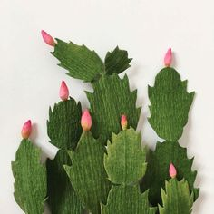 Paper Christmas Cactus by A Petal Unfolds