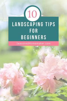 Most people never attempt a new garden landscape because they don't know where to start. In this popular pin I have 8 Gardening Landscape Tips for Beginners that will teach you How to Landscape. #landscapingtips #gardening Vegetable Garden For Beginners, Gardening For Beginners, Outdoor Landscaping, Backyard Landscaping, Landscaping Ideas, Backyard Ideas, Garden Ideas, Diy Gardening, Vegetable Gardening
