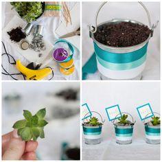 DIY mini plantas para recuerdos de boda