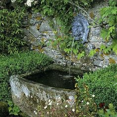 Traditional wall fountain and stone basin Rustic water feature. An ancient stone trough, with a lion-shaped spout, turns a rustic garden wall into an unusual water feature. Box, erigeron and bamboo edge the area, giving it a magical appearance.