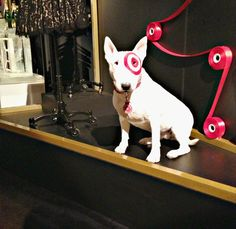 Bullseye is getting up close with the Neiman Marcus + Target #Holiday24 Collection. Landen loves this dog!