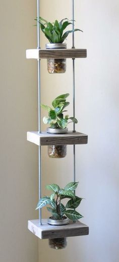 Vertical Planting - 19 creative ideas and tips for vertical gardening - wohnen - Plantio Mason Jar Plants, Plants In Jars, Succulents In Containers, Pot Plants, Mason Jar Gifts, Mason Jars, Vertical Planting, House Plants Decor, Driftwood Projects