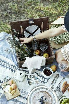 a summer picnic | Ana Rosa