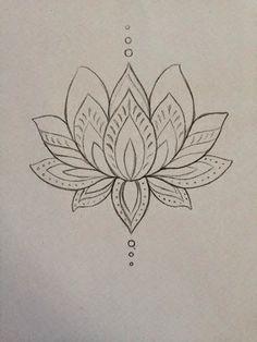 My lotus drawing