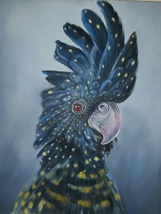 """""""Parrot"""" by Craig Hilton-Barber. Paintings for Sale. Bird Paintings, Bird Artwork, Animal Paintings, Animal Drawings, Art Drawings, Parrot Painting, Painting & Drawing, Australian Parrots, Art For Art Sake"""