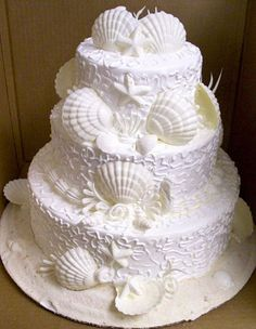 Seashell wedding cake from Mason's Bakery in Fort Myers