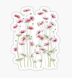 'Yellow Cosmos Flowers' Sticker by JRoseDesign Homemade Stickers, Diy Stickers, Printable Stickers, Laptop Stickers, Journal Stickers, Planner Stickers, Cosmos Flowers, Red Bubble Stickers, Tumblr Stickers