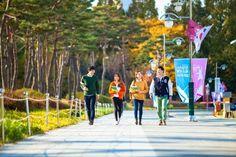 Những sai lầm mà du học sinh Hàn Quốc thường mắc phải ~ Du học Hàn Quốc
