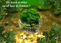 Our #Earth is the only common thing which keeps every Living Beings connected to each other. Such is the #Power of our #Mother Earth. Let's keep the bond Strong Forever.