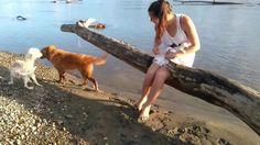 Como enseña un perro a otro perro a perder el miedo al rio