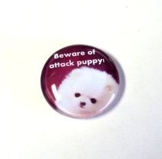 Magnet 38mm Domed Glass Dog Lover Beware of by TAKUniqueDesigns