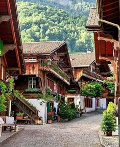 Brienz - Switzerland Picture by . for a feature - via Wonderful Places on : Amazing Destinations - International Tips - Dream - Exotic Tropical Tourist Spots - Adventure Travel Ideas - Luxury and Beautiful Resorts Pictures by Switzerland House, Places In Switzerland, Switzerland Vacation, Hetalia Switzerland, Gstaad Switzerland, Geneva Switzerland, Switzerland Christmas, Switzerland Summer, Beautiful Places To Travel