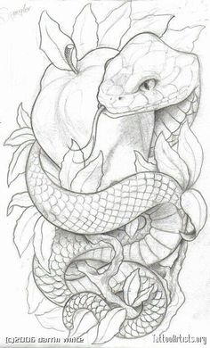 snake around neck drawing - Google Search