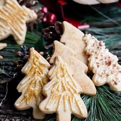 Rustic Caramel Iced Brown Sugar Cookies, baked with crunchy raw sugar topping or drizzled w/ icing and sparkles or toasted pecans. Brown Sugar Icing, Brown Sugar Cookies, Sugar Cookies Recipe, Cookie Recipes, Dessert Recipes, Icing Recipes, Baking Cookies, Dinner Recipes, All Butter Pie Crust