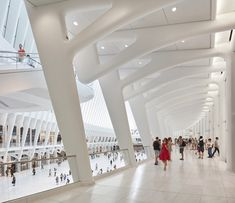 Gallery of Gallery: Calatrava's WTC Transportation Hub Photographed by…