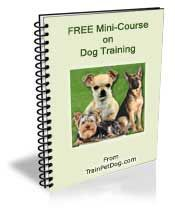 Free Book on House Training Your Specific Breed of Dog, Guaranteed to End Mistakes!