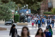 UC employees identified in 113 sexual harassment, assault reports