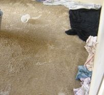 At Capital we consider wet carpet to be an emergency. When we receive a call about flooded carpet we are able to be on site in Melbourne within an hour in most cases. Call us 24/7 on 1300 554 418 to access our water damage restoration service in Melbourne.