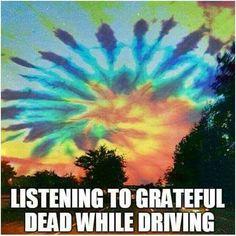 Driving Dead                                                                                                                                                                                 More