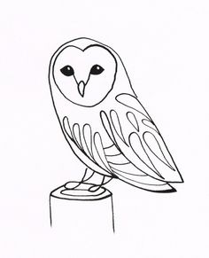 barn owl pen and ink art - Google Search