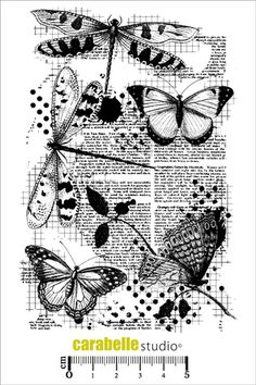 Acheter tampon scrap: Tampon papillons - CARABELLE STUDIO