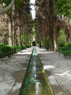 Inventory of Islamic Historic Gardens: Fin Garden in Iran | Med-O-Med