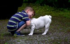 Positive Reinforcement: Not just for kids and dogs