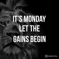 Motivational Quote  It's Monday, Let the gains Begin.