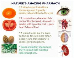 NATURE'S AMAZING PHARMACY! <3 A sliced carrot looks like a human eye and it greatly enhances blood flow to the eyes. A tomato has 4 chambers and is red, just like the heart. A tomato is loaded with Lycopine that is pure heart and blood food. A walnut looks like the brain and helps develop more than 3 dozen neuro transmitters to enhance brain functions. Beans are kidney-shaped and they heal and help maintain kidney function.