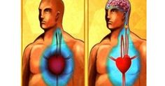 Watch This Video Captivating Clear Blocked Arteries with Natural Health Remedies Ideas. Splendid Clear Blocked Arteries with Natural Health Remedies Ideas. Lower Your Cholesterol, Cholesterol Levels, Clean Arteries, Clogged Arteries, Prevent Heart Attack, Medical Intuitive, Blood Pressure Remedies, Natural Health Remedies, Holistic Remedies