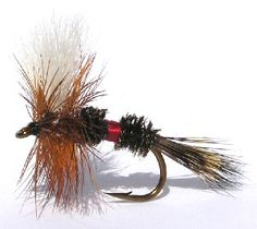 Favorite attractor fly - effective with German Brown Trout