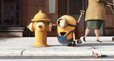Sexy Minion hitting on fire hydrant. Another funny minion video scene where Stuart is hitting on fire h. Amor Minions, Minion Gif, Minion Movie, Minions Despicable Me, My Minion, Minions Quotes, Funny Minion, Jokes, Minion Humor