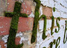 Eco-Grafitti - Jardim das Ideias STIHL